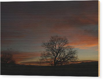 Morning Sky In Bosque Wood Print