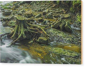 Mountain Stream Wood Print by Jaroslaw Grudzinski