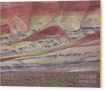 John Day Fossil Beds Painted Hills Wood Print by Michele Penner