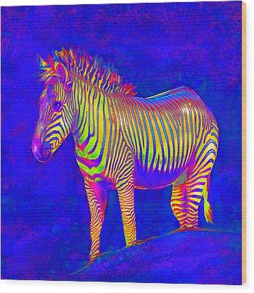 Neon Zebra 2 Wood Print by Jane Schnetlage