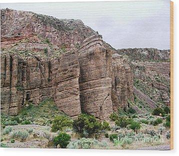 Nevada Desert Wood Print by Ted Pollard