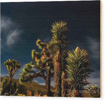 Wood Print featuring the photograph Night Desert by Angela J Wright