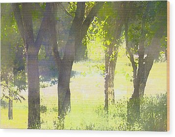 Oaks 25 Wood Print by Pamela Cooper