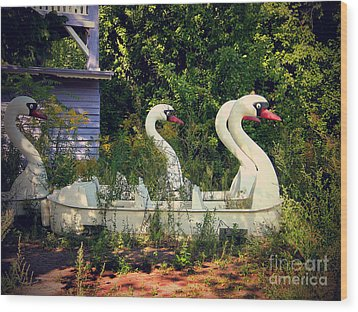 Old Swan Boats In Plaenterwald Berlin Wood Print by Art Photography