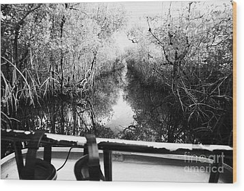On Board An Airboat Ride Through A Mangrove Jungle In Everglades City Florida Everglades Usa Wood Print by Joe Fox