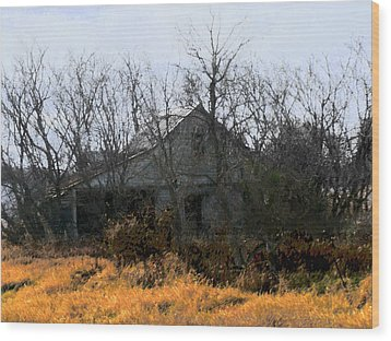 Wood Print featuring the digital art On Hwy 49 North Of Waupaca  by David Blank