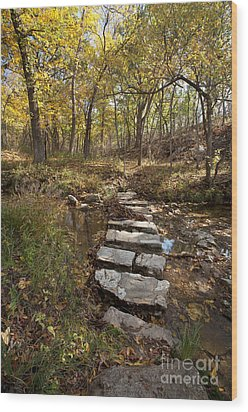 One Step At A Time Wood Print by Iris Greenwell