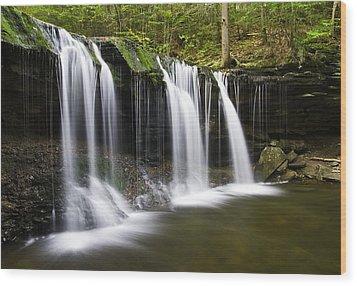 Oneida Falls Wood Print