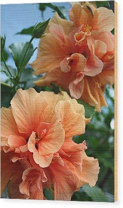 Orange Hibiscus Pair Wood Print