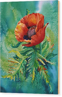 Orange Oriental Poppy Wood Print