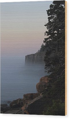 Otter Cliffs 2 Wood Print