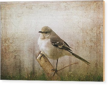 Wood Print featuring the photograph Out On A Limb by Yvonne Emerson AKA RavenSoul