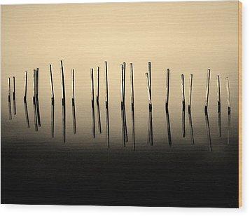 Palisade Wood Print