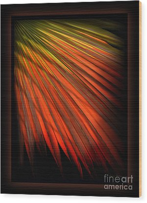 Palm Sunday Wood Print by Shevon Johnson