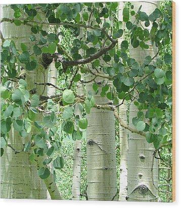 Peace Wood Print by Brenda Pressnall
