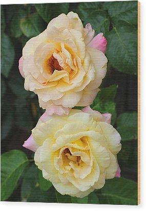 Peace Roses Wood Print