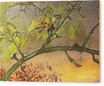 Pear Tree In The Sunset Wood Print by Odon Czintos
