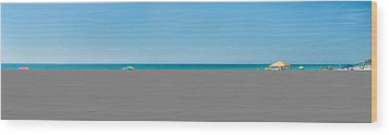 People On The Beach, Venice Beach, Gulf Wood Print by Panoramic Images
