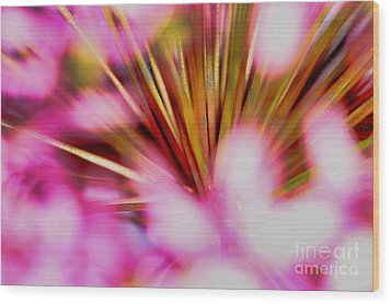 Wood Print featuring the photograph Pink Alium by Rebeka Dove
