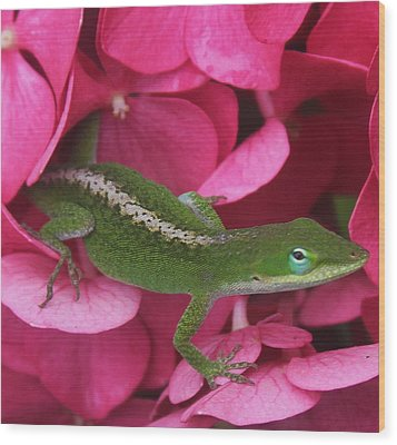 Pink Hydrangea And Lizard 2 Wood Print