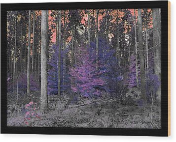 Wood Print featuring the photograph Pink Sky by Michaela Preston
