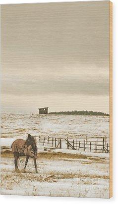Plaid And Snow Wood Print by Sandi Mikuse