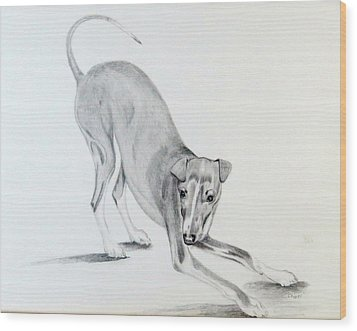 Wood Print featuring the drawing Play Time by Sharon Schultz