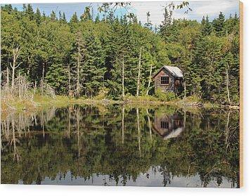 Pond Along The At Wood Print