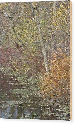 Pondside Pastel Wood Print