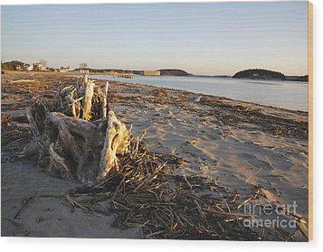 Popham Beach State Park - Phippsburg Maine Usa Wood Print by Erin Paul Donovan