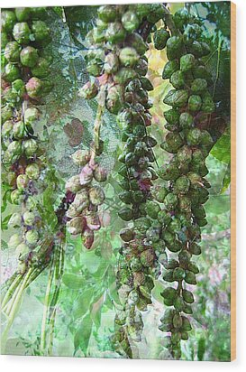 Poplar Secrets Wood Print by Shirley Sirois
