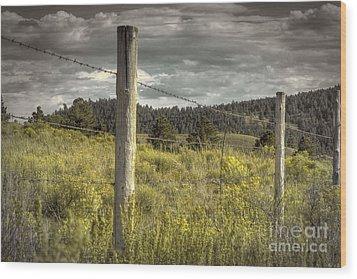 Prairie Fence Wood Print