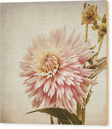 Pretty In Pink Wood Print by Marion McCristall