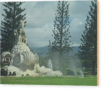 Wood Print featuring the photograph Princeville by Alohi Fujimoto