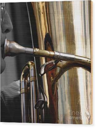 Profile In Tuba Wood Print by Steven Digman