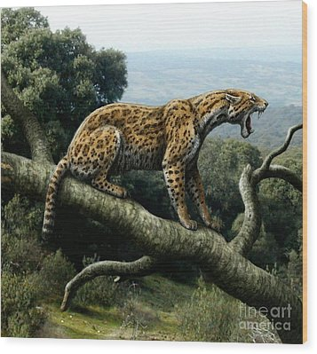 Promegantereon Sabretooth Cat Wood Print by Mauricio Anton