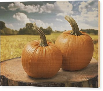 Pumpkins Wood Print by Amanda Elwell
