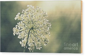 Quiet Moment Wood Print by France Laliberte