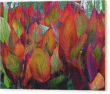 Rainbow Leaves Wood Print