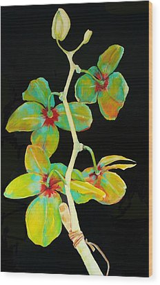 Rainbow Orchids Wood Print by Jean Cormier