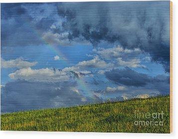 Rainbow Over Pasture Field Wood Print by Thomas R Fletcher