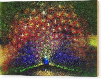 Rainbow Peacock Wood Print by Jodie Marie Anne Richardson Traugott          aka jm-ART