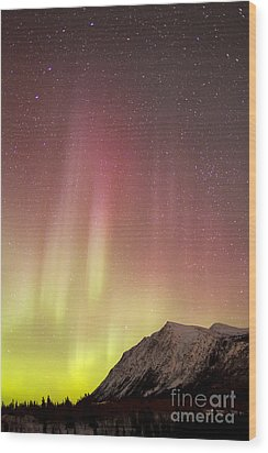 Red Aurora Borealis Over Carcross Wood Print by Joseph Bradley