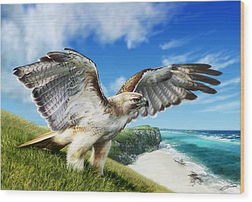 Red-tailed Hawk Wood Print by Owen Bell