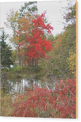 Red Tree Wood Print by Margaret McDermott