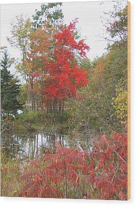 Red Tree Wood Print by Margaret McDermott