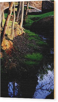 Wood Print featuring the photograph Reflection2 by Steve Godleski