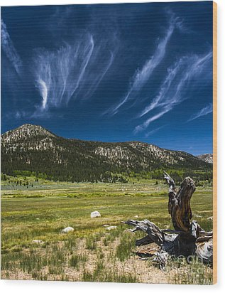 Riders In The Sky Wood Print by Mitch Shindelbower