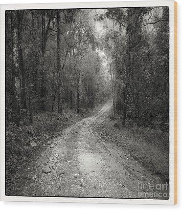 Road Way In Deep Forest Wood Print by Setsiri Silapasuwanchai