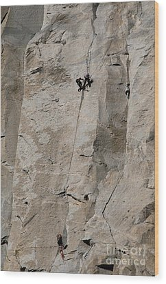 Rock Climber On El Capitan Wood Print by Mark Newman